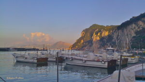 Capri's harbor sunset
